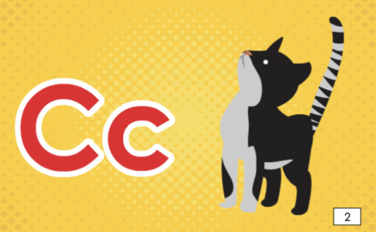Cc is for Cat